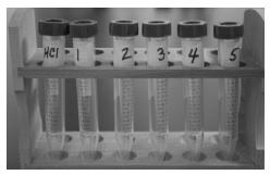 Acids 2 Lab Test Tubes